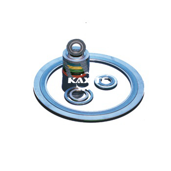 Standard Spiral Wound Gasket